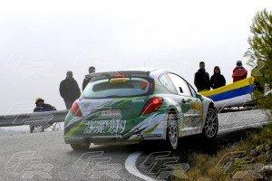 WRC Yazeed Al Rajhi - Dale Moscatt PEUGEOT 207 S2000 copia