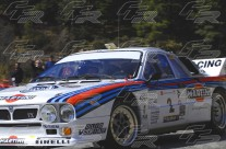Rallye de España de históricos, Campeonato de Europa